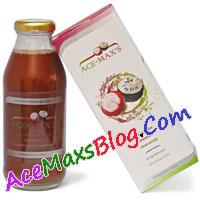 AceMaxsBlog.com__